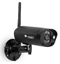 C995IP IP-kamera 1080p Utomhus