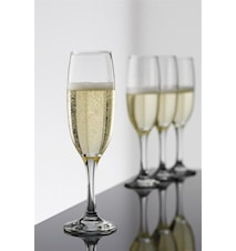 Café Champagneglass 22 cl 4-pakk