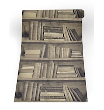 Bookshelf sepia tapet
