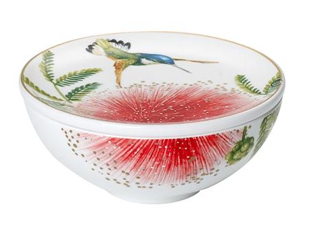 Villeroy & Boch Amazonia Gifts Decorative Astia