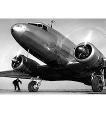 Old Plane Väggdekoration