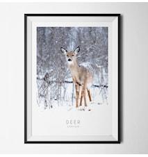 Photo art Deer poster