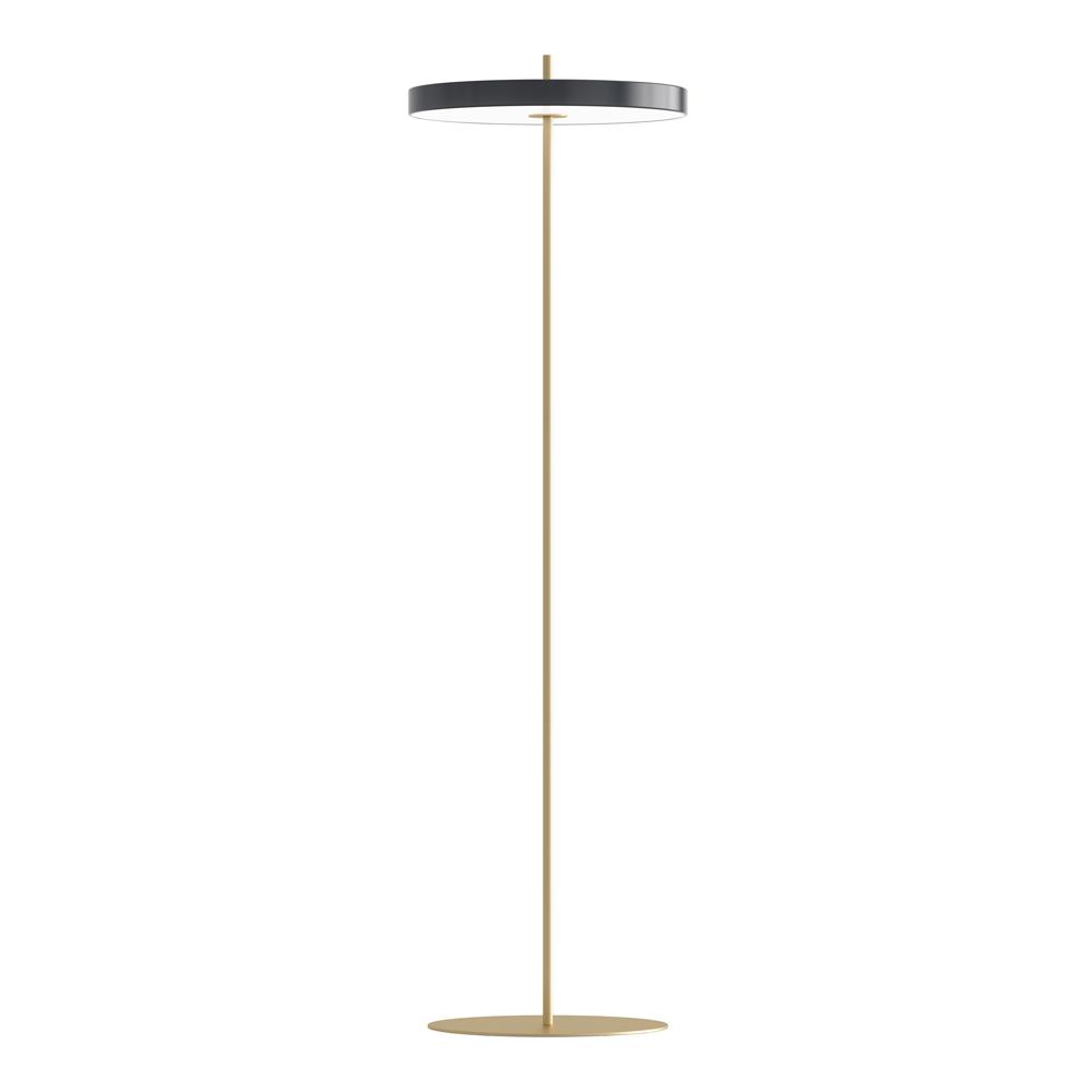 Asteria Floor Golvlampa 40x150 cm Antracit