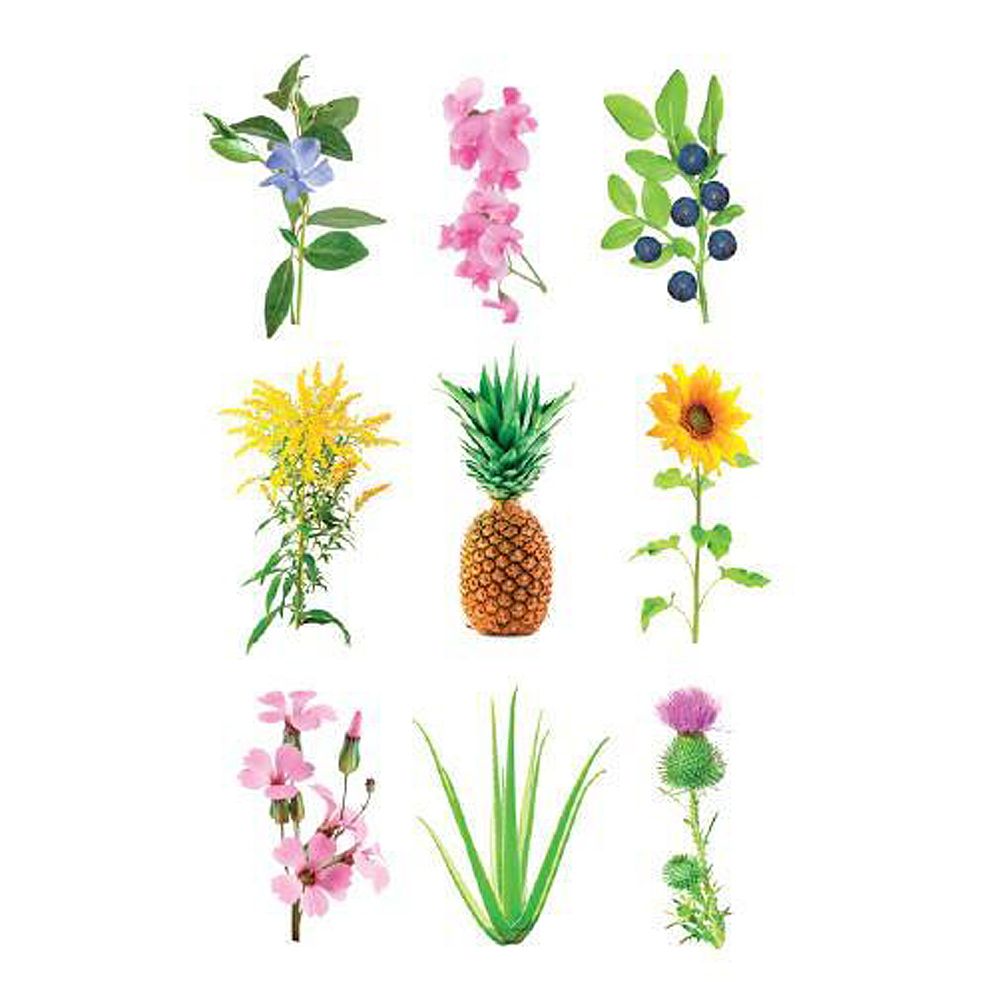 Smart Garden Växtkapsel refill 3-pack Experimental