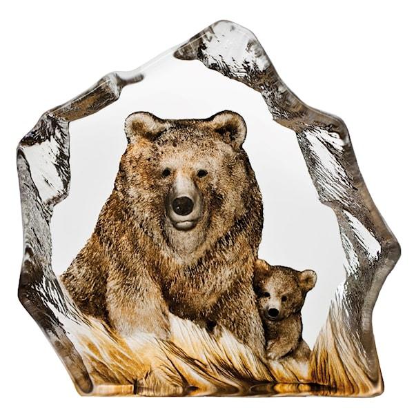Safari Björn 15,5x16 cm