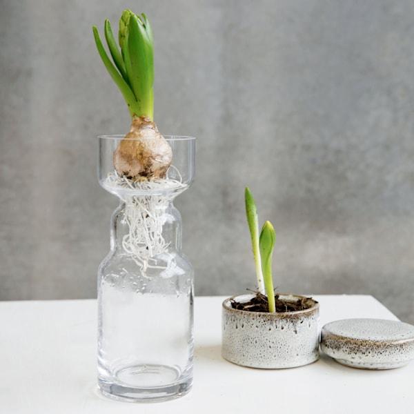 Cinth Vas 20 cm Klar glas