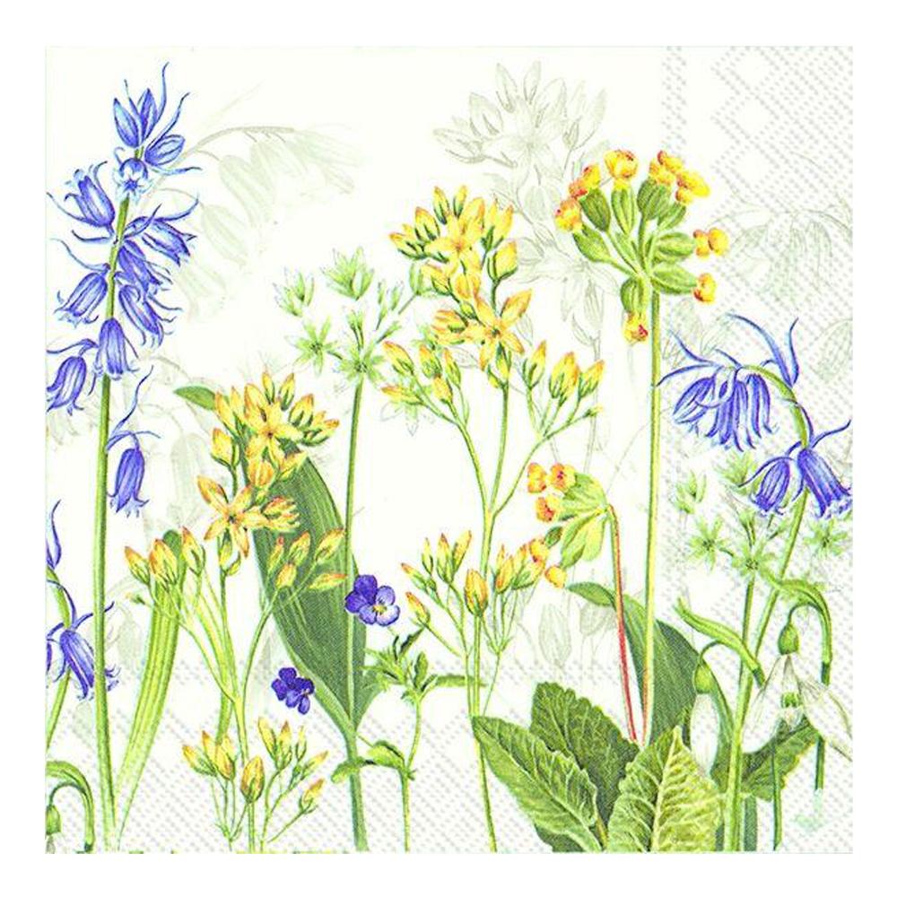 Servett 33x33 cm 20-pack Coming of Spring