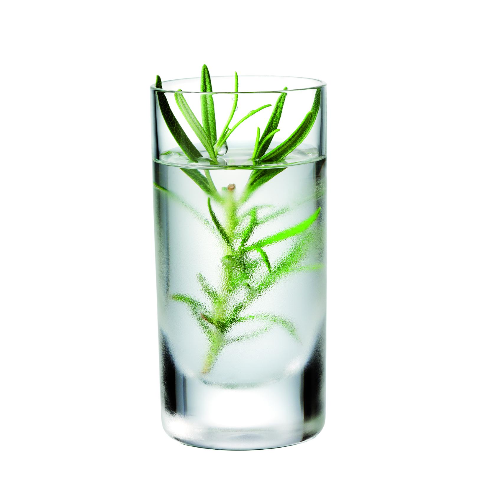 Allglas Shot 4 cl 6-pack
