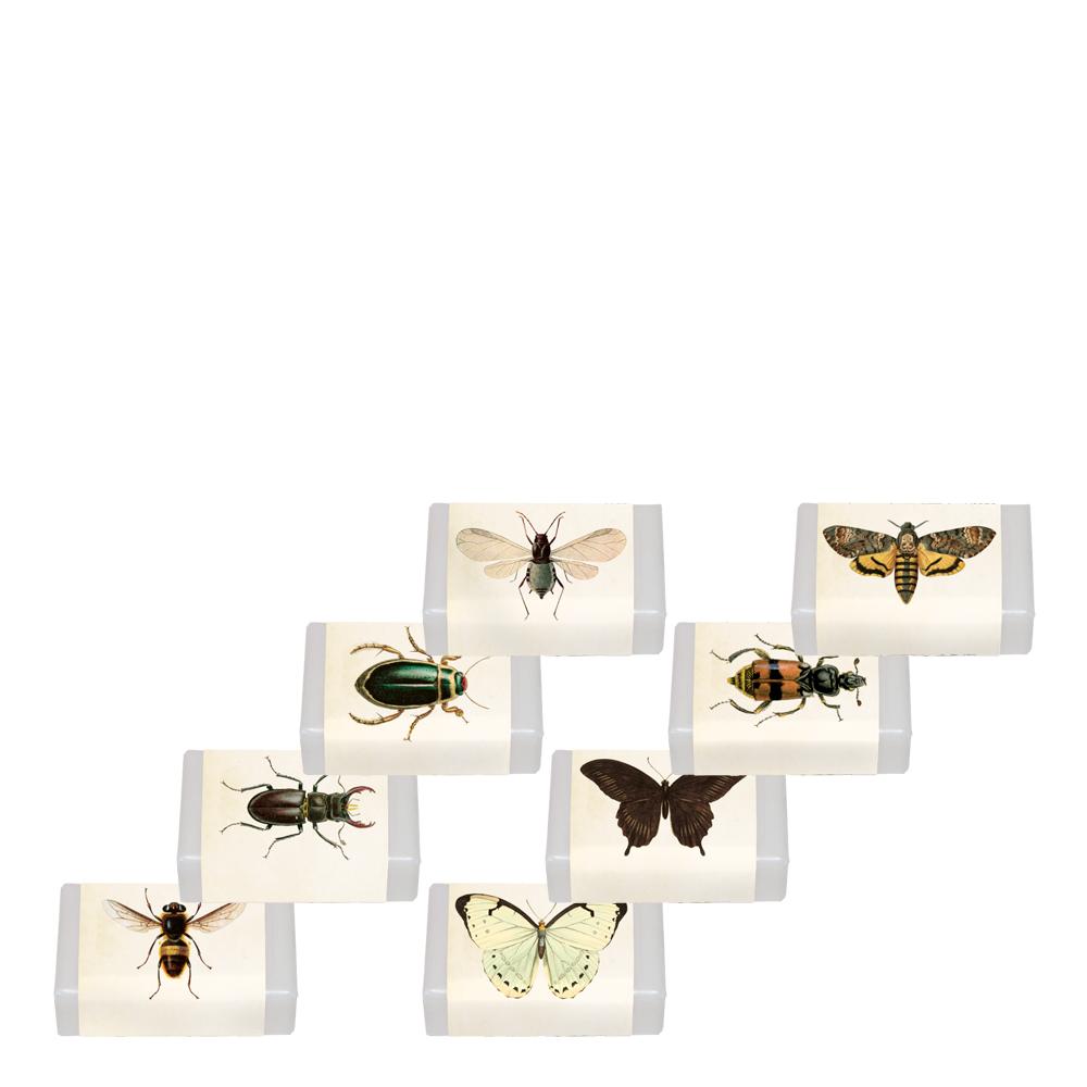 Tvålar Insekter Citrondoft SORTERAD