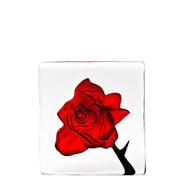 Black Bird Röd ros 10x10,5 cm