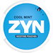 ZYN Mini Cool Mint