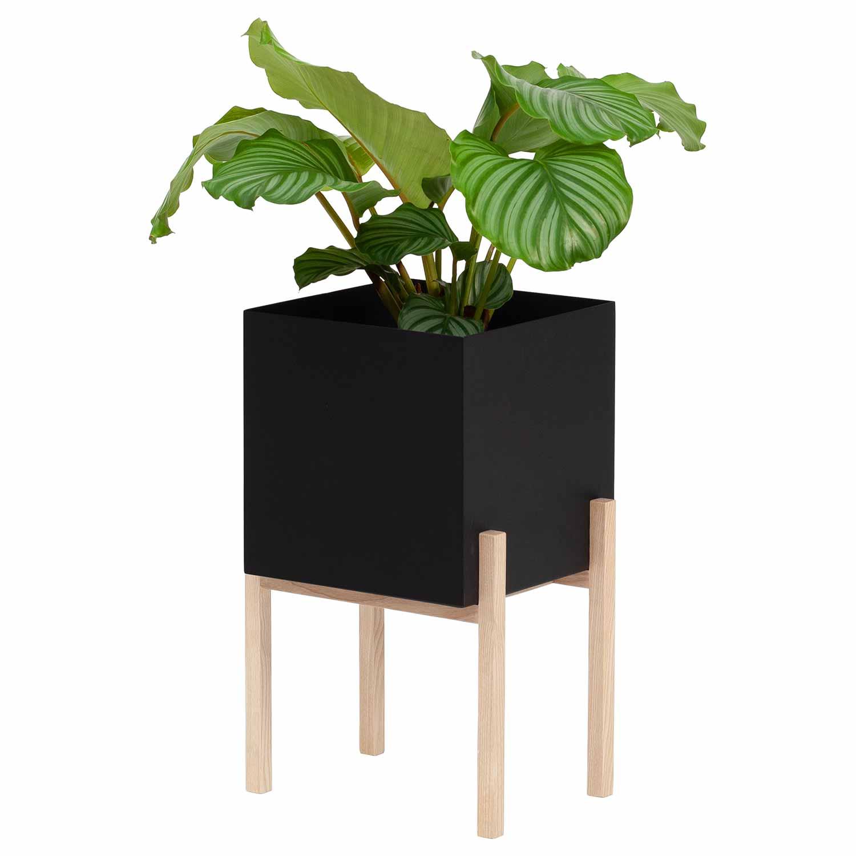 Botanic Piedestal
