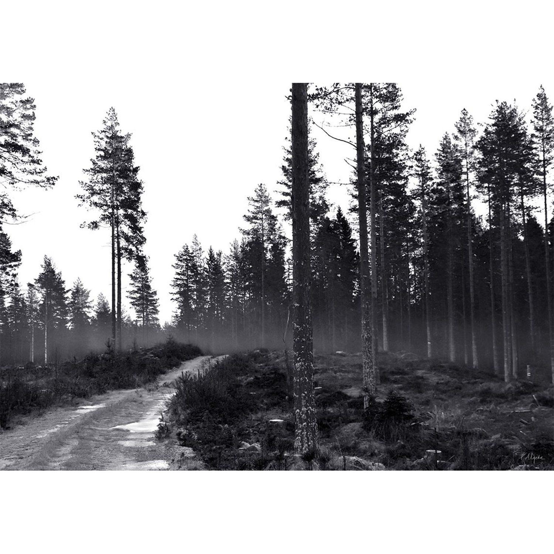 Bilde av House of Beatniks-On The Path Poster, 50X70